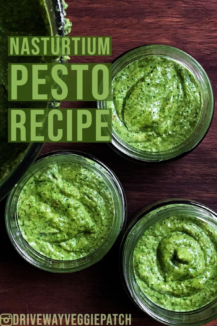 Driveway Veggie Patch Nasturtium Pesto Recipe
